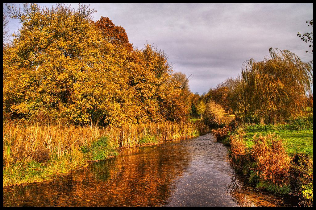River Cray and Autumn Trees