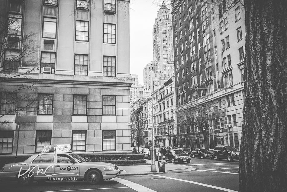 New York Taxi (in mono)