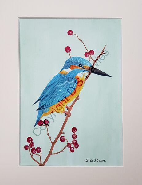 Kingfisher and Berries