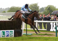 Whatduhavtoget (Harry Skelton)