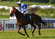 Wigley Group Carnival H'cap Chase