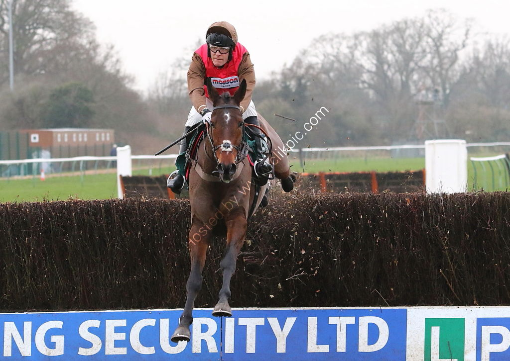 Schiaparelli Willoughby De Broke Hunters Chase.