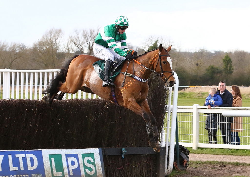 EBF Mares' Novices' Chase