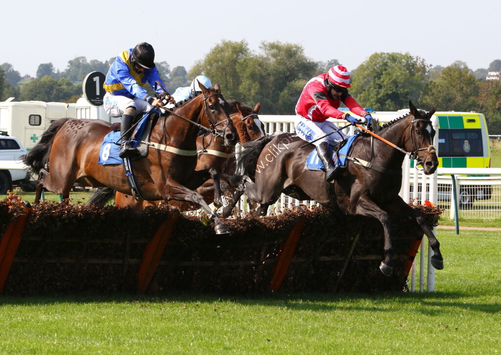 Wigley Group Nov Hurdle