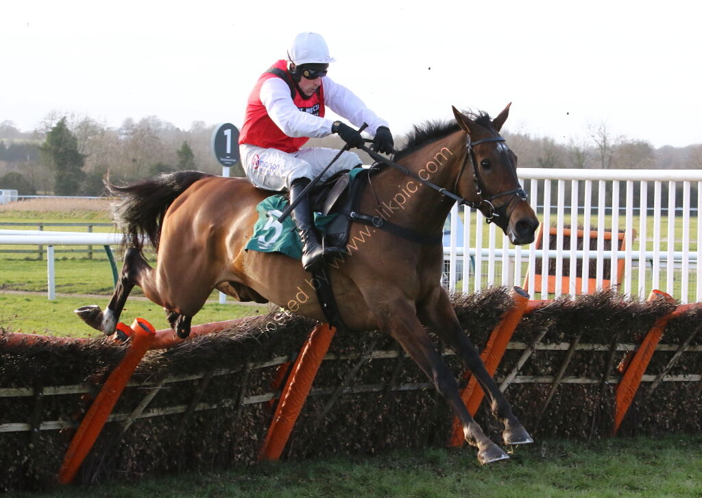 Molly Ollys Wishes (Harry Skelton)