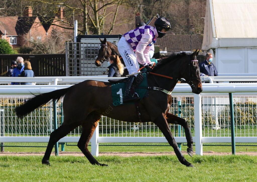 British Stallion Studs EBF 'NH' Nov Hurdle