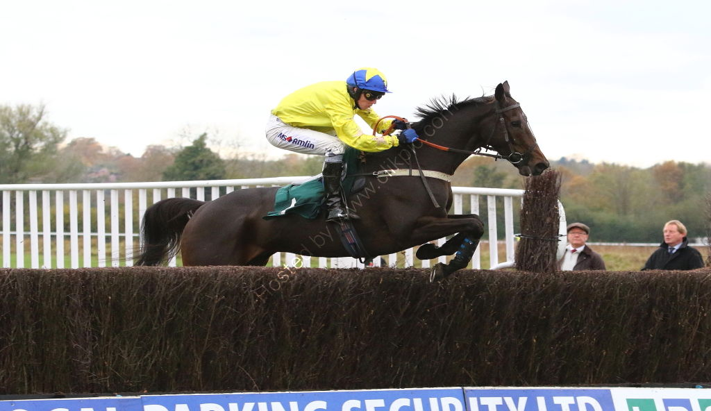 Racing TV Novices' Chase