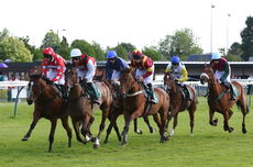 Racing TV  Warwickshire NH Flat Race