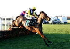 GillyGallyPaddyParry Handicap Hurdle