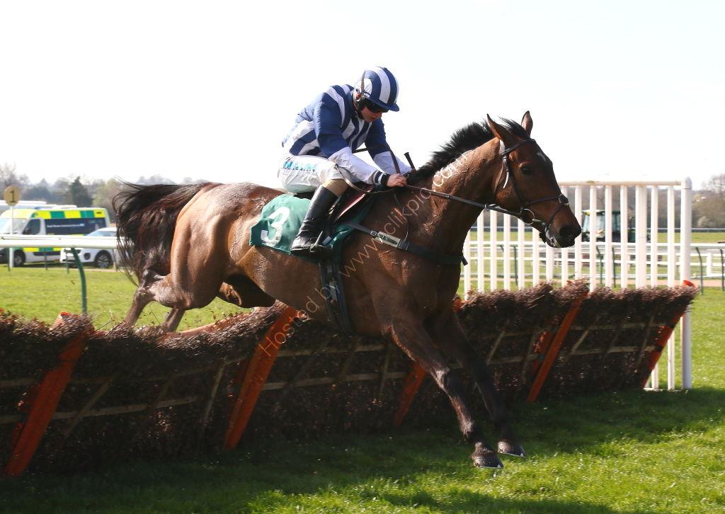 racingtv.com Maiden Hurdle