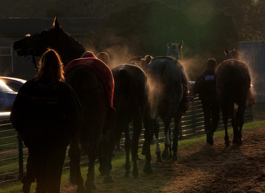 The runners head back to the stables.