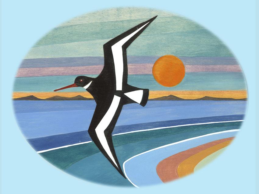 F21 Oystercatcher Sunset