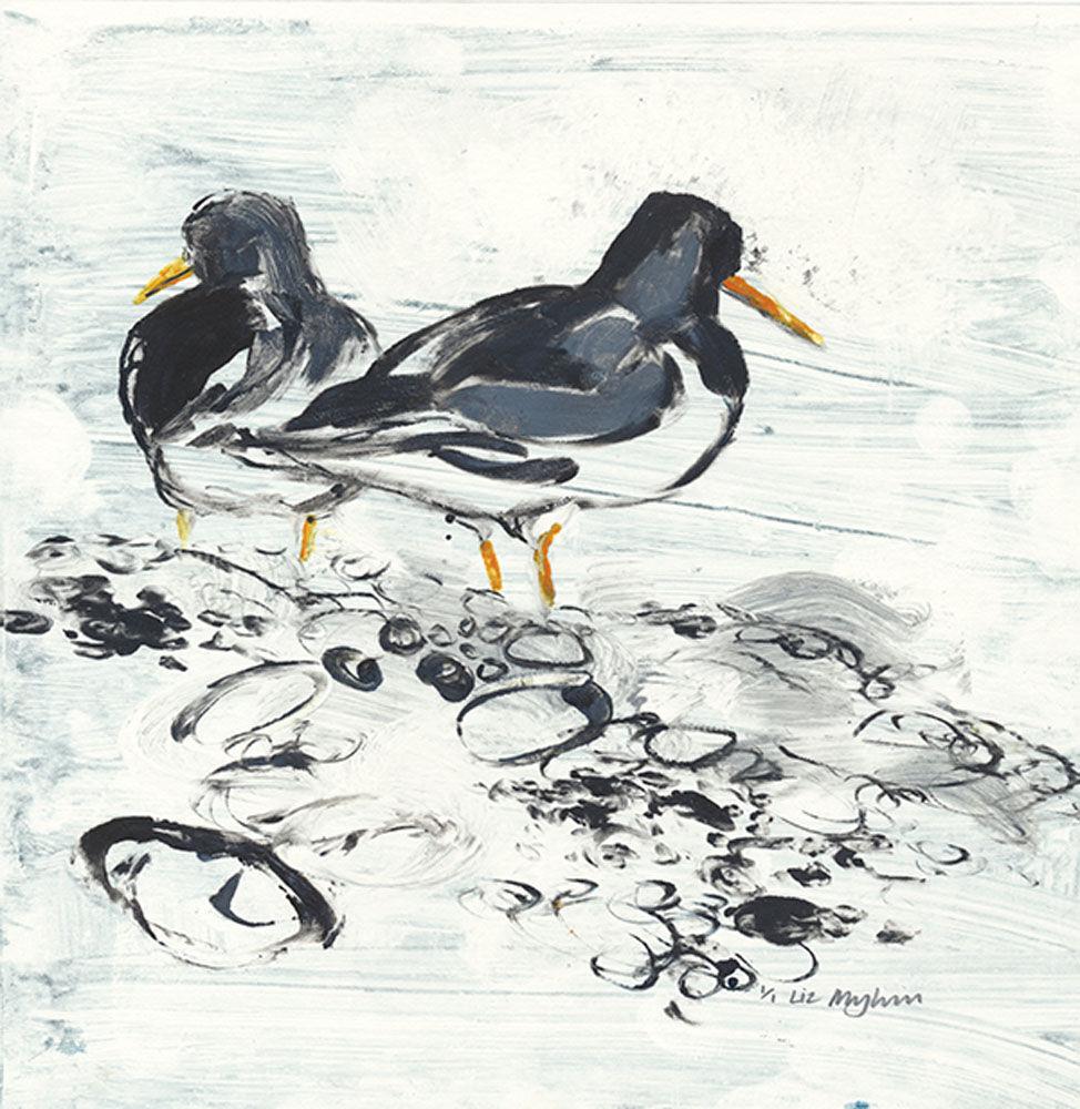 Dandelion Designs - Liz Myhill: Oyster Catchers