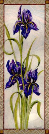 Purple Iris Watercolour Framed £225 15 x40 2