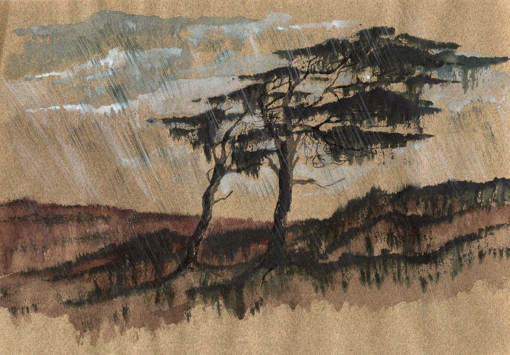 Dandelion Designs:- Cathy Myhilll - Scots Pine