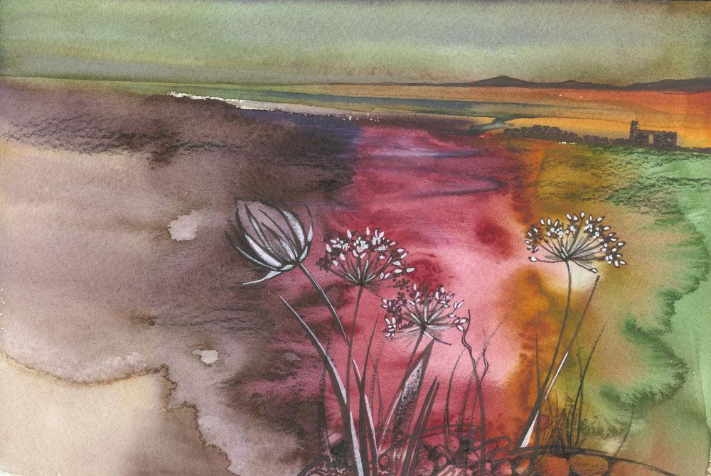 Dandelion Designs:- Cathy Myhilll - Wayside Flowers