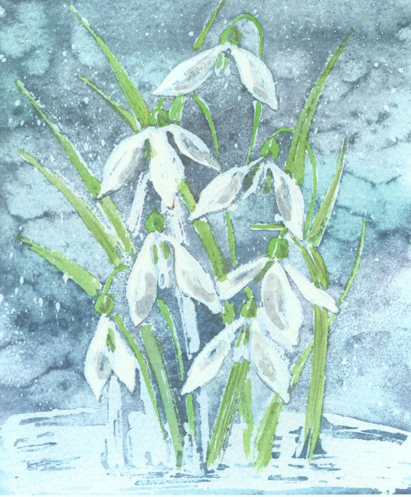 Dandelion Designs:- Cathy Myhilll - Winter Snowdrops