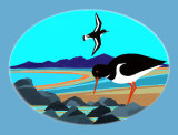 f6 Oystercatcher Warning