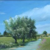 Willow Trees on The Levels 16x12 sold
