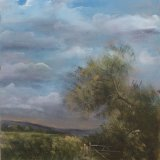 Gate on the Somerset Levels 16x12 (SOLD)