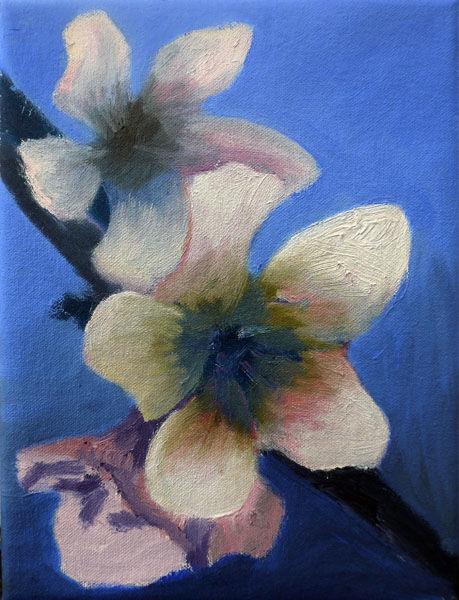 Apple Blossom, oil on canvas, 18cm x 24cm, 09,10,2020
