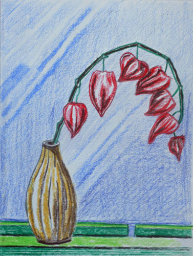 Chinese Lanterns, 6in x 8in, coloured pencils