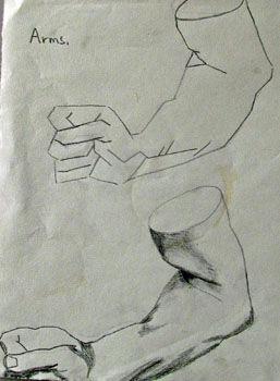 Plate 19. charcoal pencil, 24cm x  30.5cm