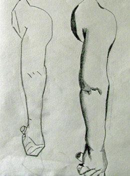 Plate 21. charcoal pencil, 24cm x  30.5cm