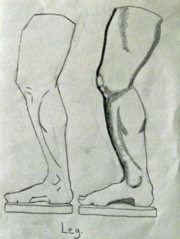 Plate 25. charcoal pencil, 24cm x  30.5cm