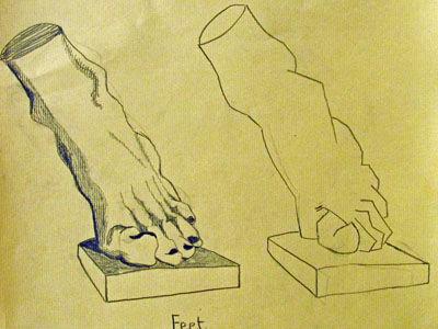 Plate 7. charcoal pencil, 24cm x  30.5cm