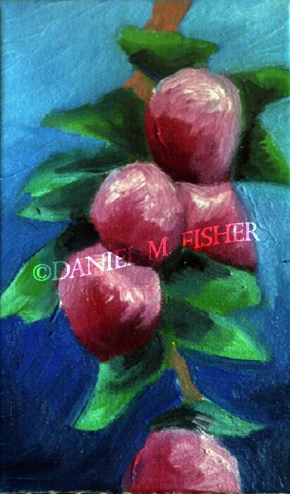 Sprig of Apples, 2020, 15cm x 24cm, oil