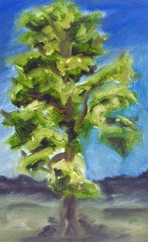 Tall Tree, oil on paper, 17.5cm x 25cm