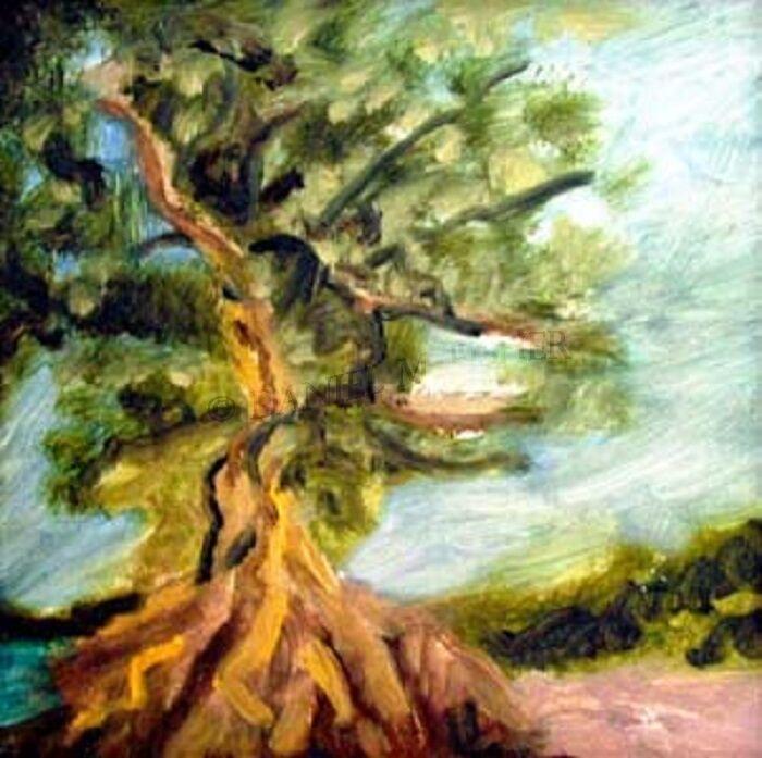 Tropical Tree, 20cm x 20cm, oil