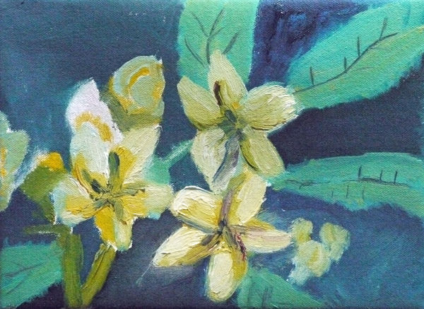 anenomes, oil on canvas, 18cm x 24cm