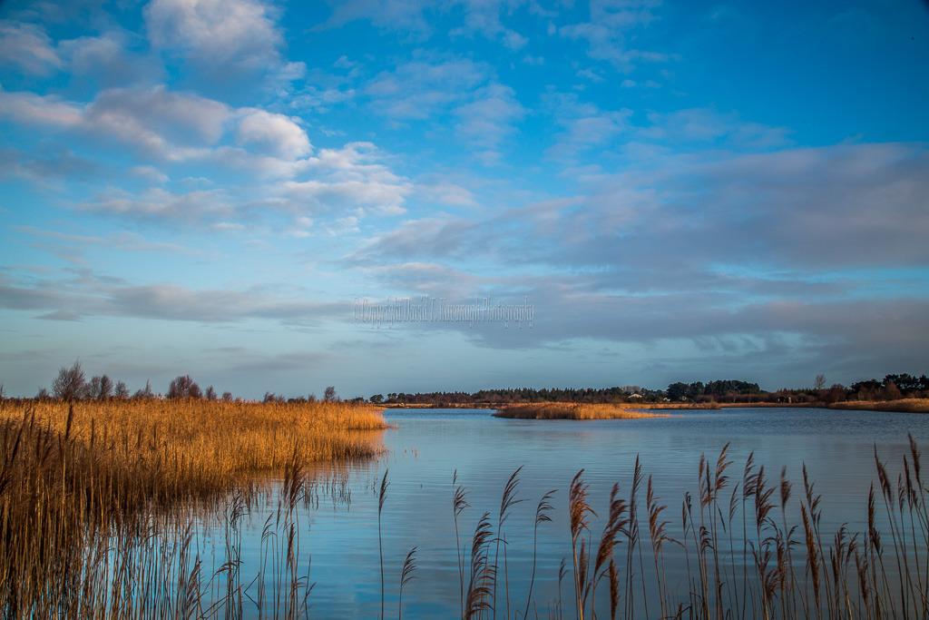 1007-Boora Lake Tullamore Offaly blue sky