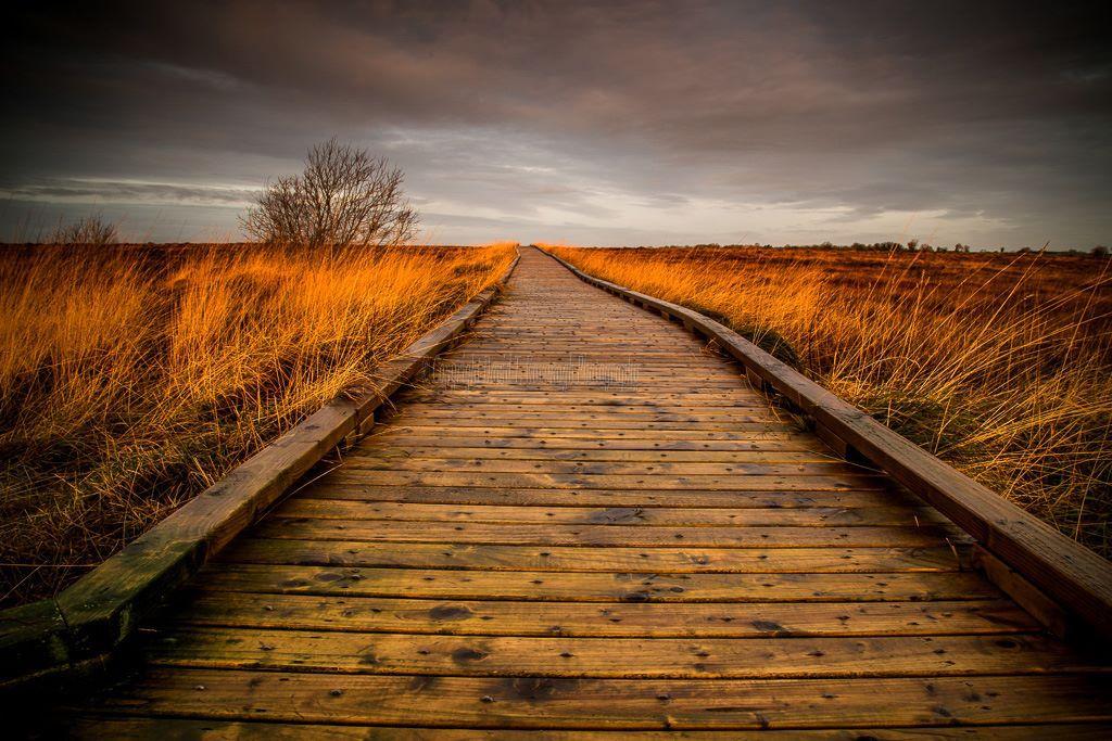 1020-Clara Bog Offaly boardwalk grey sky