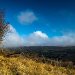 1047-Baunreagh valley Killanure Laois early morning sun