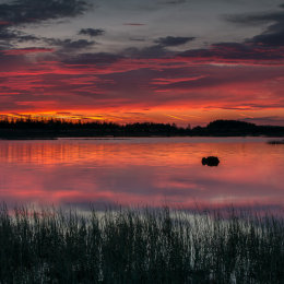 1090-Magenta and Gold dawn sky over Tumduff Loungh Boora Parklands Offaly Ireland