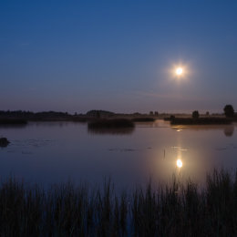 1123-Rising Moon and Misty Lake Tumduff Beag Lough Boora Discovery Park Offaly