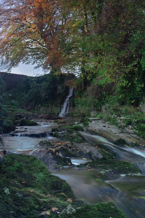 1131-Glendolan Waterfall Cadamstown Offaly Ireland