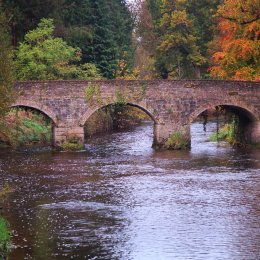 1151-The Brick Bridge Birr Castle Demesne Offaly