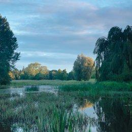 1154-Lagoon Garden Birr Castle Demesne Offaly