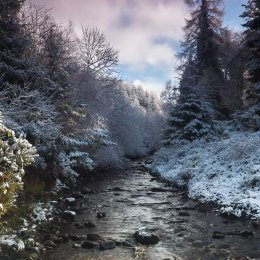 1155 Glenregan Winter Slieve Bloom Mountains Offaly