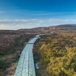 1160-Slieve Bloom Way Ridge of Capard Laois
