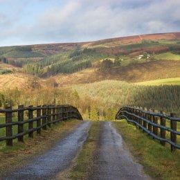 1164-Glendelour Slieve Bloom Mountains Laois