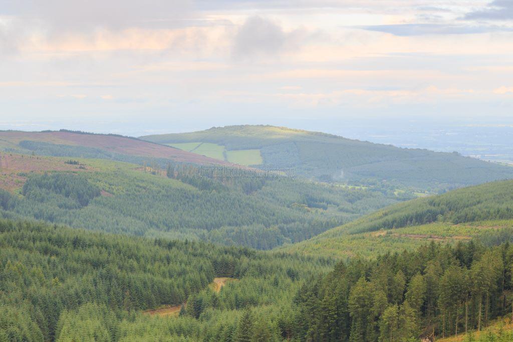 1174-Knocknaman Slieve Bloom Mountains Offaly