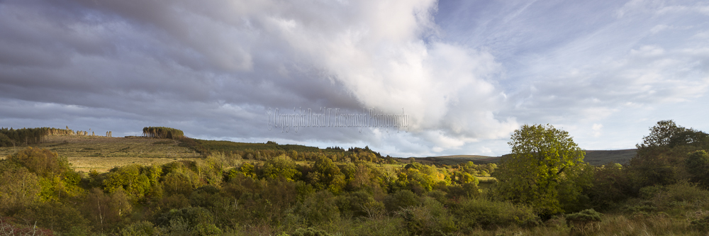 1225P-Spink and Barlahan Slieve Bloom Mountains Offaly Ireland
