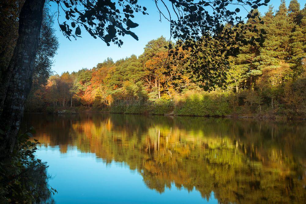 1243-Brittas Lake Clonaslee Laois Ireland