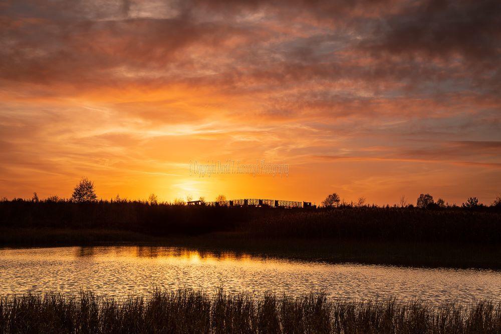 1287-Sky Train Golden Sunset