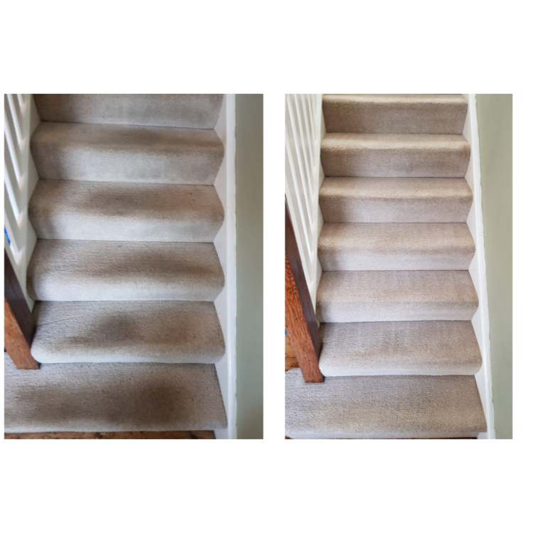 Beautifully cleaned stair carpet